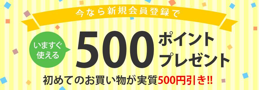 今なら新規会員登録で500ポイントプレゼント中